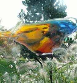 Vriesia Glaskunst 10 daagse